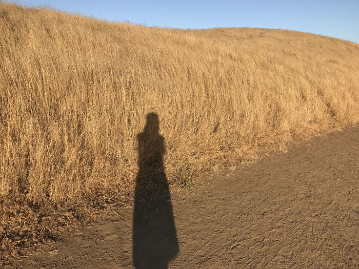 Shadowplay Beauty In Nature Brown Color Day Field Grass Landscape Nature One Person Outdoors People Real People Shadow Shadow-art Sky Standing The Week On EyeEm