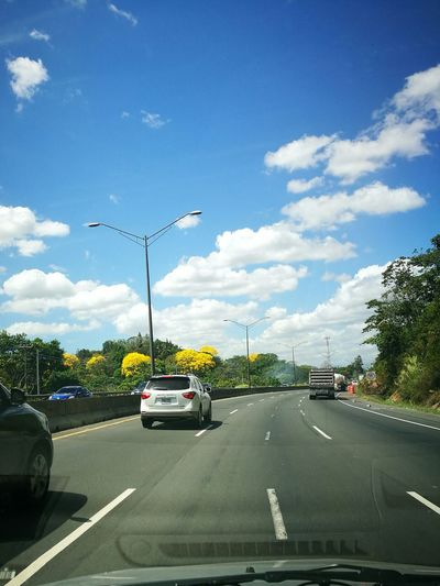 On The Move Day Driving Tree Scenics Nature Panama Countryside Clear Sky Sunlight Adapted To The City