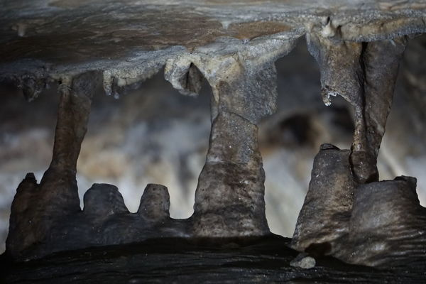 Stalactite  Beauty In Nature Beauty In Nature Cave Close-up Day Geological Geological Formation Geology Indoors  Indoors  Nature No People Rock - Object Stalacmite Stalagnate