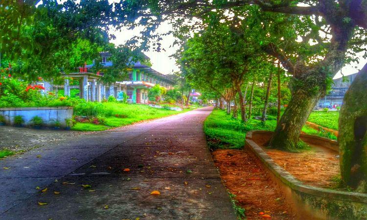 Morning walk Good Morning Walking Around Summertime Taking Photos