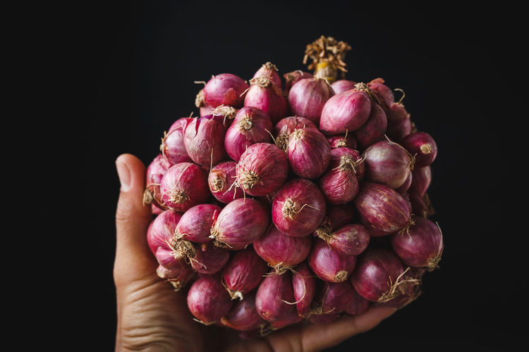 Shallots-Onions -Spice from Vietnam ASIA Cooking Farm Food And Drink Isolated Medicine Nature Vietnam Bamboo Delicious Food Healthy Eating Healthy Food Ingredient Old Wood Onion Organic Purple Raw Food Shallot Spice Still Life Tasty