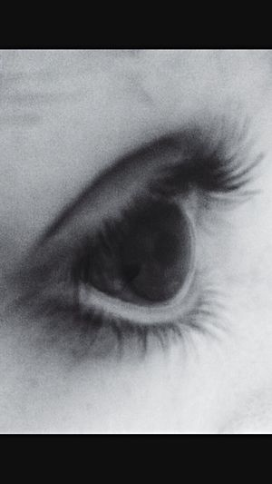 Human Body Part Eye Close-up Eyelash Iris - Eye Real People Iris