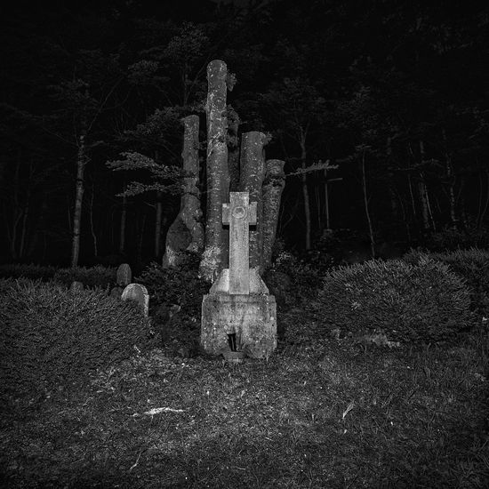view of cemetry in woods at night B/W Photography EyeEm Best Shots Blackandwhite Cemetery darkness and light Environment Field Forest Fujifilm_xseries Grass Grave History Land Light And Shadow Nature Night No People Outdoors Plant The Past Tombstone Tranquility Tree Tree Trunk