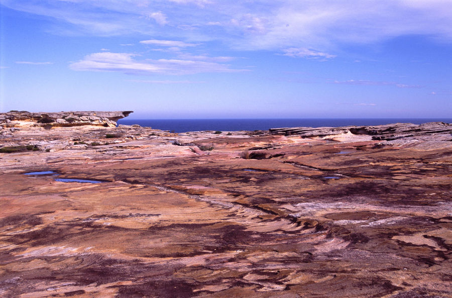 sandstone plateau in the royal national park, near sydney Australia Australian Cliff Cliffs Coastline Geology Outdoors Red Royal National Park Sand Stone Sandstone Sea Seascape Sydney