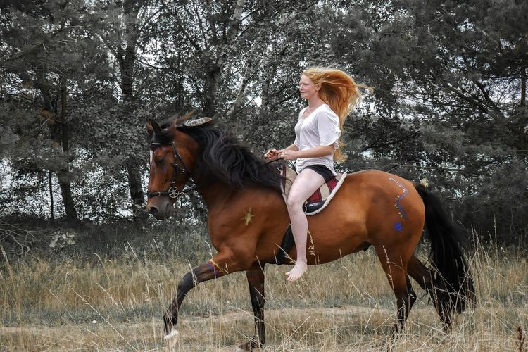Full length of young woman riding horse on field against trees
