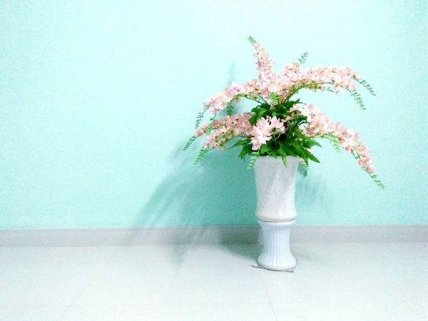 Flower Day Wildflower No People Indoors  Flower Arrangement Flower Head Bunch Of Flowers EyeEmNewHere EyeEmNewHere