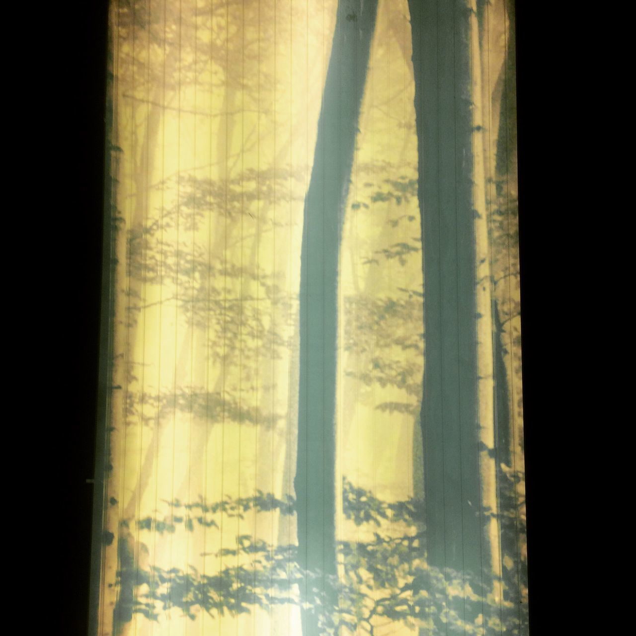 curtain, drapes, no people, black background, day
