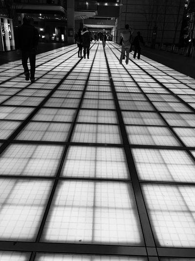 東京国際フォーラム 国際フォーラム Tokyo Light And Shadow EyeEmBestPics Taking Photos
