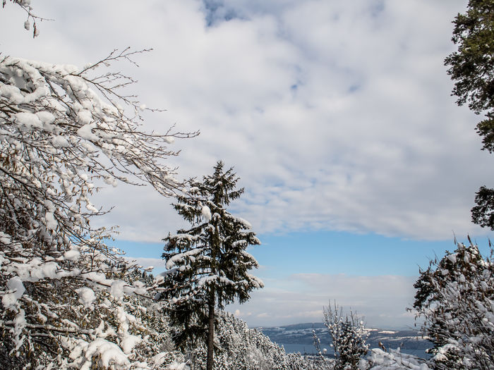 Low angle view of snow covered landscape against cloudy sky