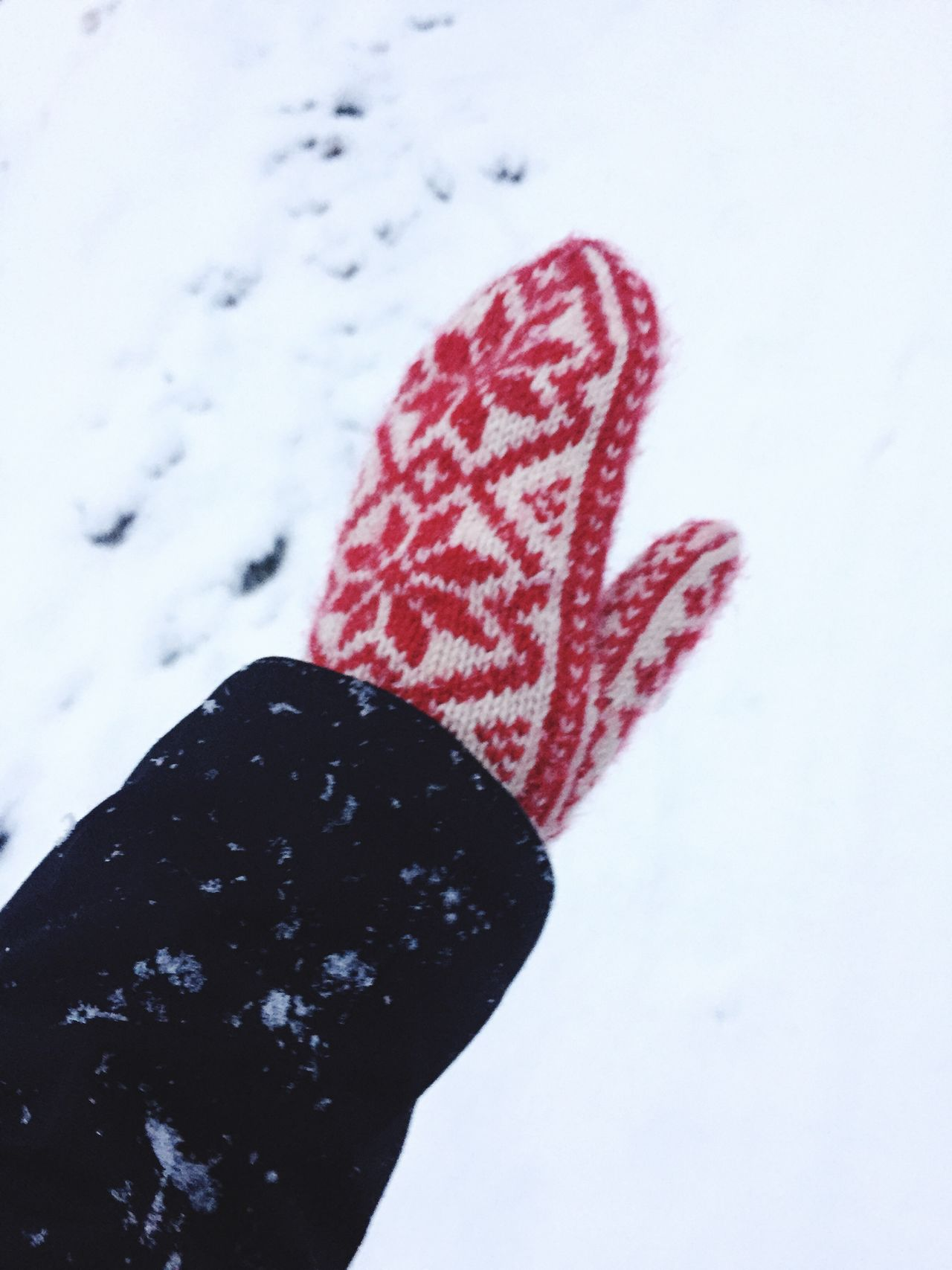 Cropped image of hand wearing gloves during winter