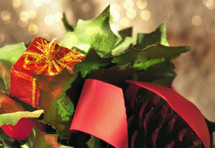 Celebration Blur Lights Celebration Christmas Christmas Decoration Christmas Ornament Close-up Decoration Gift Green Color Holiday Leaf Red Ribbon