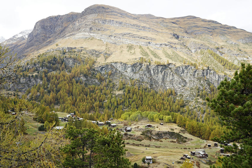 October Travel Photography Zermatt Beauty In Nature Grass Landscape Mountain Mountain Range Nature No People Outdoors Scenics Sky Swizerland Tree With Wife Perspectives On Nature