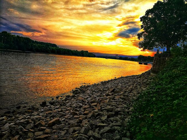 Sonnenuntergang am Rhein / Sunset at Rhein Betterlandscapes Water Sunset Orange Color Sky Cloud - Sky Landscape Calm Countryside Silhouette Cloud Blooming Outline Green