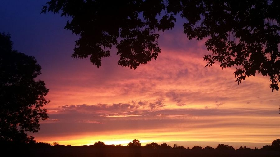 Colorful August sunset in Green Bay Wisconsin. Check This Out Enjoying Life WisconsinSunset Wisconsin Summer Wisconsin Sunset Greenbay Sunsetpictures Sunsetporn Nature Naturelovers Naturephotography Nature Photography Sunsets Mothernature Landscape Landscape_Collection Landscape_photography