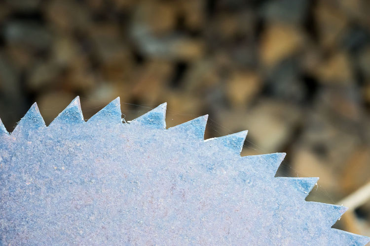 Close up of sawblade