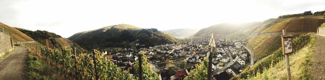 Beautiful day in Dernau, the best place for wine. Dernau Wine Country Winemaking EyeEm Selects Mountain Day Outdoors Built Structure Nature Panoramic Sky No People Landscape