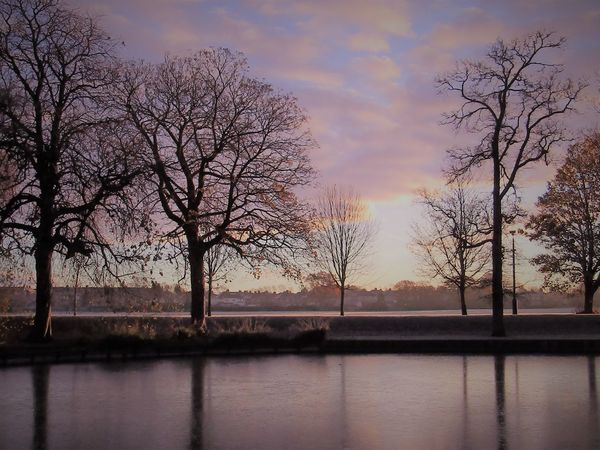 Beauty In Nature Cloud - Sky Darlington  Day Frozen Lake Frozen Lake, Nature No People Outdoors Reflection Silhouette Sky South Park, Darlington Sunset Tree