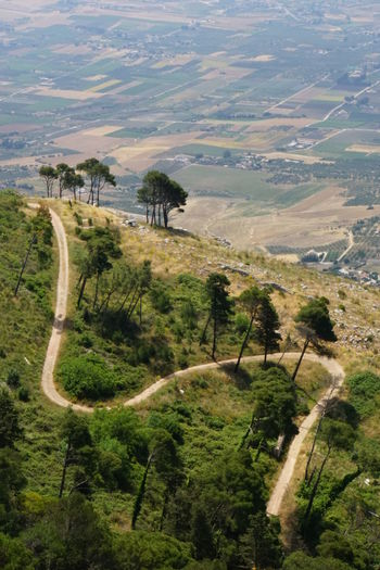 Curvy Road Curvy Way High Angle View No People No Photoshop Outdoors Path Up A Hill Scenics Sicilyphotography Sony A6000 The Way Up Trees And Grass View From Erice, Sicilia