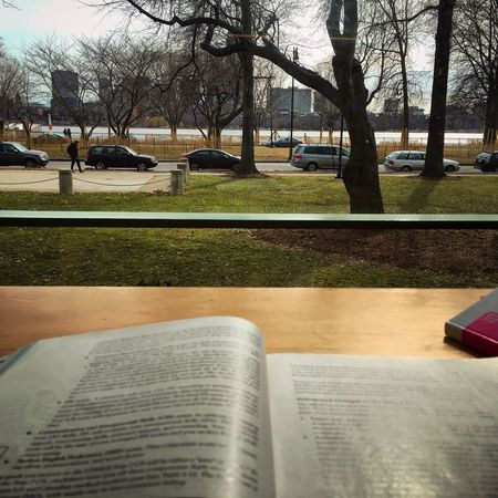Mit Library Lovely View Studying CharlesRiver Boston Massachusetts is that just a library, really?!💚