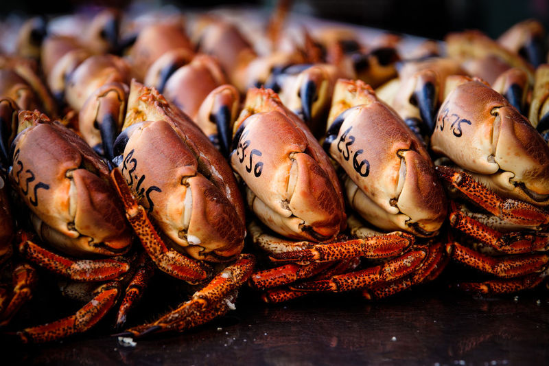 Crabs on market stall for sale