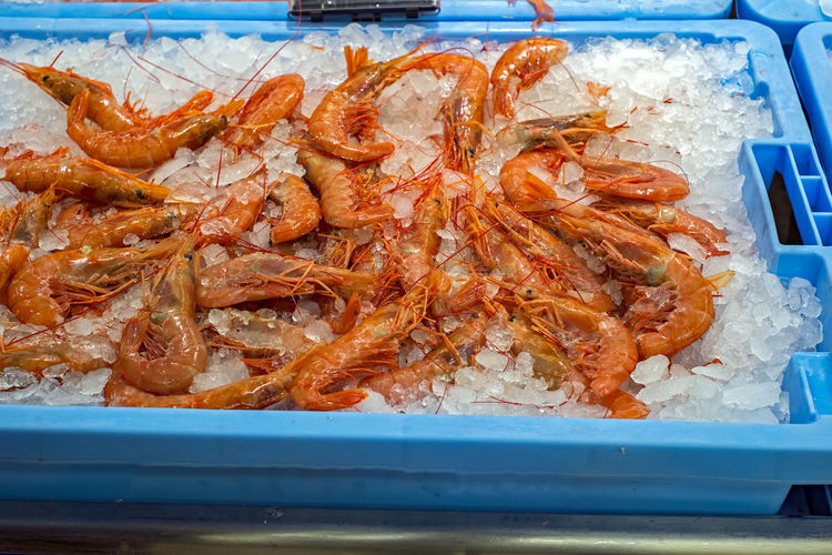 Prawns on Ice at the market Fresh Produce Freshness Ice Ice Crystal Ice Cube Market Seafood Seafoods Animal Themes Close-up Day Food Food And Drink Fresh Freshness Healthy Eating Indoors  Lobster Market Stall Marketplace No People Prawn Prawn Noodles Prawns Ready-to-eat Seafood Shrimp