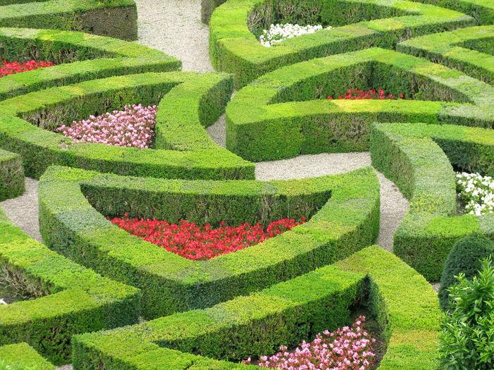 High Angle View Of Ornamental Garden