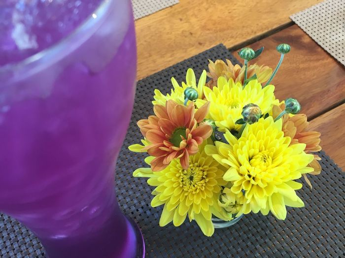 Nature Flower Beauty In Nature Table Yellow Drinking Dring