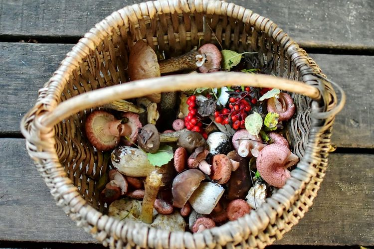 High angle view of basket with mushrooms