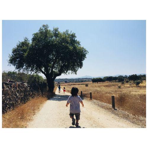 Rear view of boy walking on road against clear sky