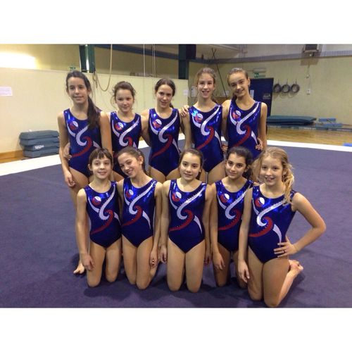 My girls TTeamGymnastiquenNew BodyaArtistic Gymnastics