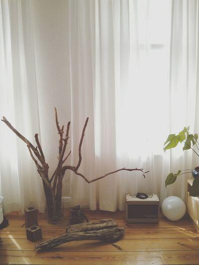 Still life Living Room