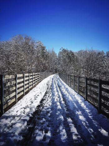 Real Cold Temperature Snow Winter Tree Nature No People Blue Outdoors Bare Tree Beauty In Nature Sunlight Railing The Way Forward Tranquil Scene Scenics Shadow Clear Sky Tranquility Day Sky
