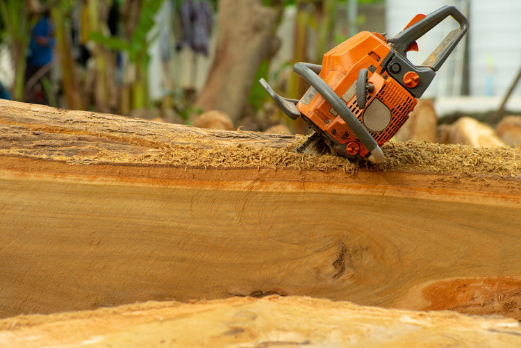 Close-up of chainsaw in the log