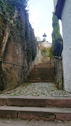 Steps Tree Outdoors Steps And Staircases Nature Day Staircase Sky No People Baden Baden Germany Baden Baden