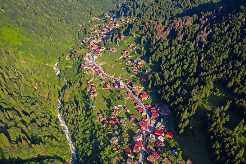 Aerial view of