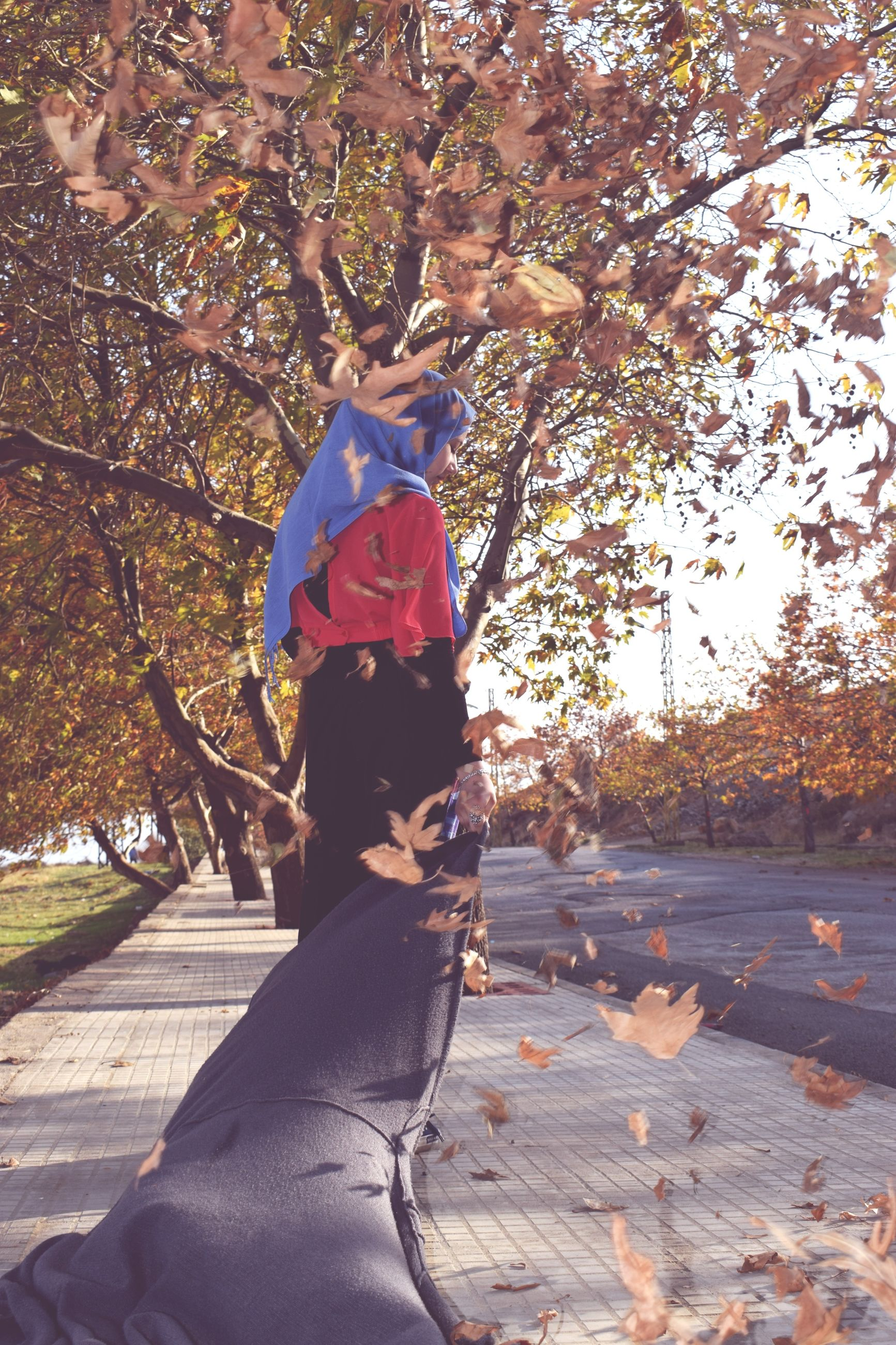 tree, autumn, real people, outdoors, leaf, day, branch, nature, leisure activity, lifestyles, full length, beauty in nature, young women, young adult, people