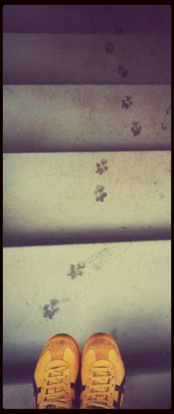 Going to Upstairs. Tracks:: Ilovemydog::Stand For Land::