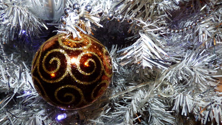 Christmas is coming, another year it will end, I expect everyone to be happy with family friends and strangers, time of love and sharing everyone a good Christmas Celebration Christmas Christmas Ball Christmas Decorations Christmas Time Christmas Tree Christmastime Close-up Fragility Ornate