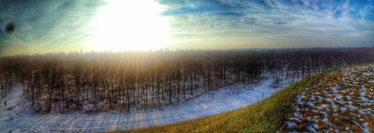 View. Travel Traveling View Beautiful Nature Trees Sunset Sun Winter Snow Hungary Showcase: February