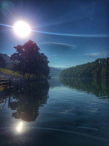 Rhein Morning