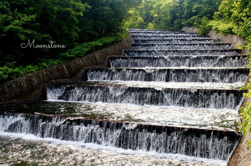 EyeEm Best Shots Landscape Refreshment Water EyeEmNewHere Negative Ions Fountainhead 奥沢水源地 No People Outdoors Forest Staircase Beauty In Nature Tranquility