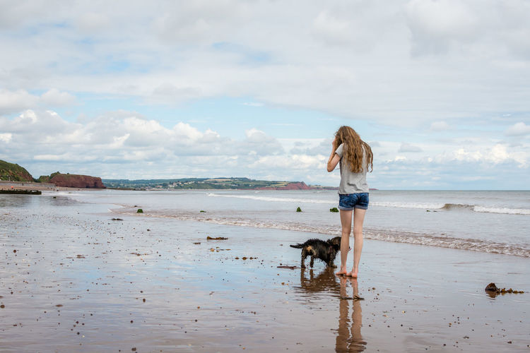 View of dog on beach