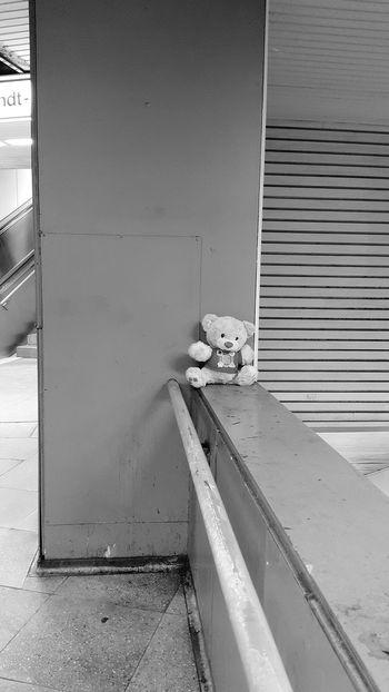 Underground Teddy Bear Frankfurt Am Main Lost Alone Forgotten City City Life Train Station Blackandwhite Black And White City Location Urban Scene Abandoned