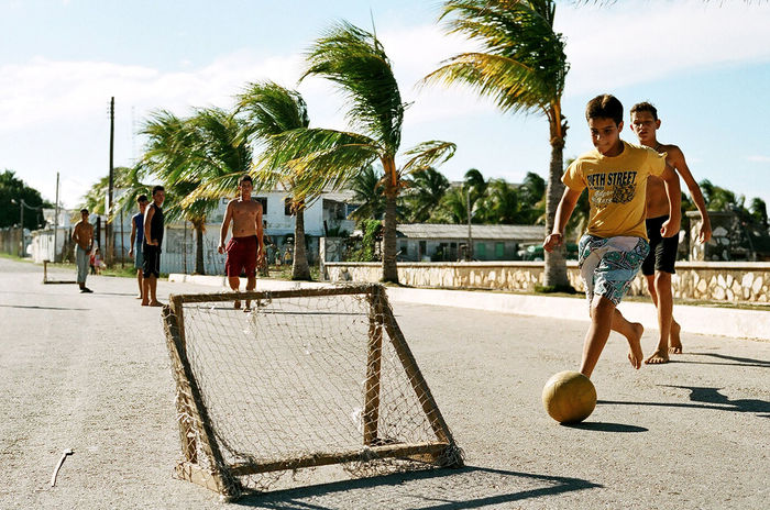 PEOPLE PLAYING ON PALM TREES