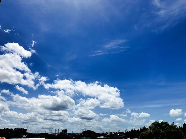 Sky Cloud - Sky Blue Tree Day No People Nature Outdoors Scenics Beauty In Nature Tranquility Low Angle View Iphone7photography Iphonephotography IPhoneography Architecturephotography The Street Photographer - 2017 EyeEm Awards Outdoors, Outside, Open-air, Air, Fresh, Fresh Air, Philippines