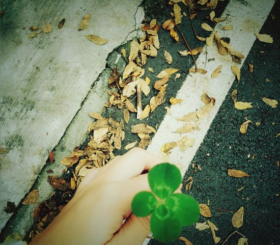 i find it Luckly !just like i Find You !