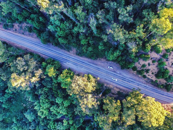 I'm loving the sky 📷👏🏻❤️ Aerial View Outdoors Beauty In Nature Road Air Photography Shot From Above  Trees Dji Phantom Landscape Above Freshness Photographer Shotbyme Photography