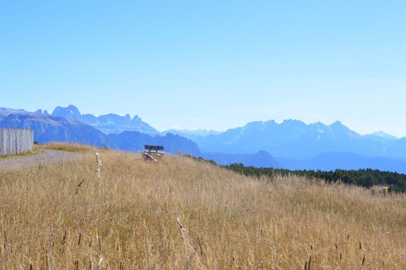 Italia Italy South Tyrol Südtirol Alto Adige Italien Sky Mountain Land Scenics - Nature Field Landscape Environment Tranquil Scene Plant Beauty In Nature Tranquility Copy Space Agriculture Mountain Range Clear Sky Growth Nature Blue Rural Scene Day