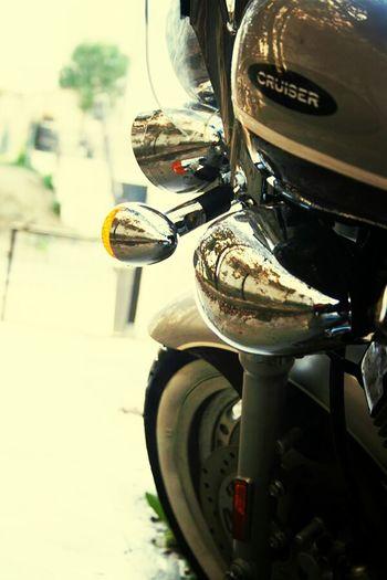 Ride Or Die Hobby Cruiser Mirroring