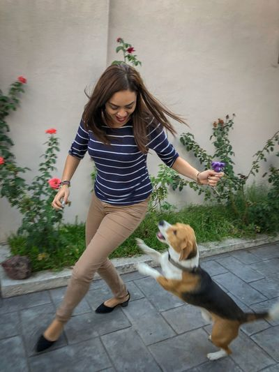 Happiness Playing With My Dog Fun Pets Leisure Activity Real People Lifestyles One Person Casual Clothing Pets Domestic Young Women Dog Hair Canine Full Length Front View Domestic Animals Women One Animal Hairstyle